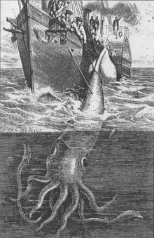 Alecton and the Giant Squid