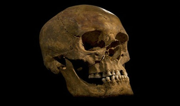 King-richard-iii-skull