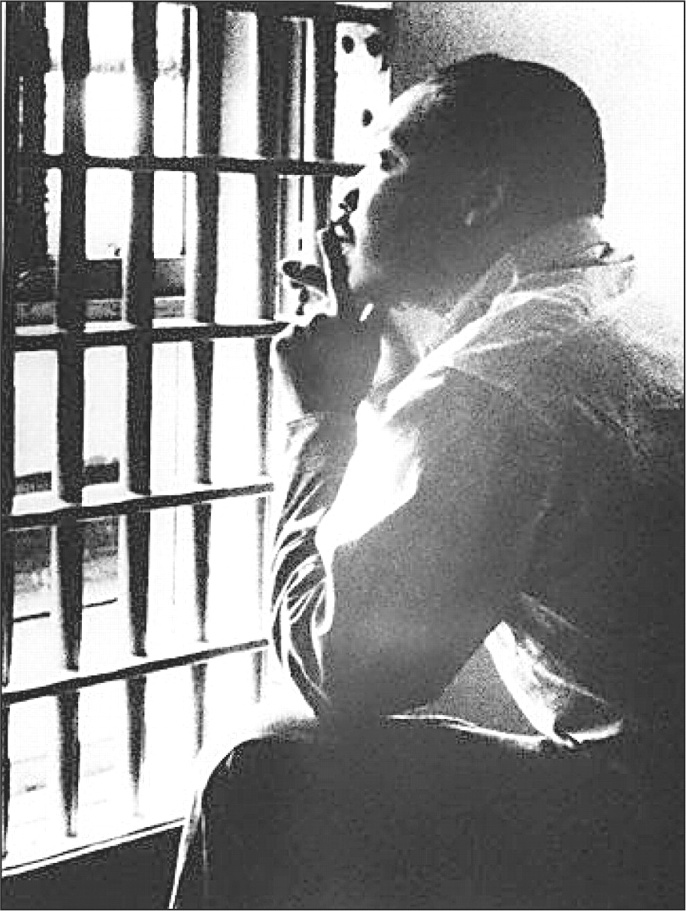 martin luther king jr the historian reflections on letter from  martin luther king birmingham jail
