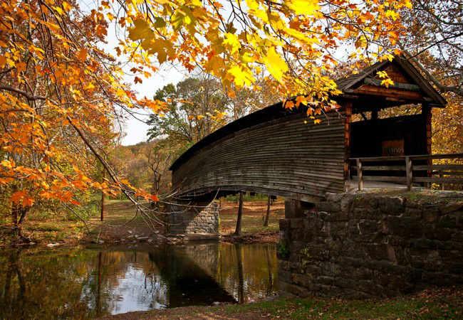 Humpback-Bridge–Covington