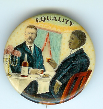 Equality Pin supporting Theodore Roosevelt
